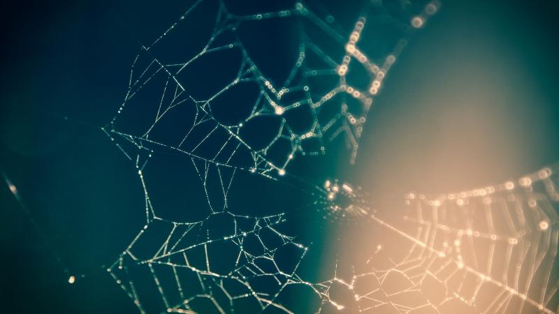 Netzwerktreffen 2.0